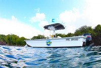 bateau-bleu-passionl
